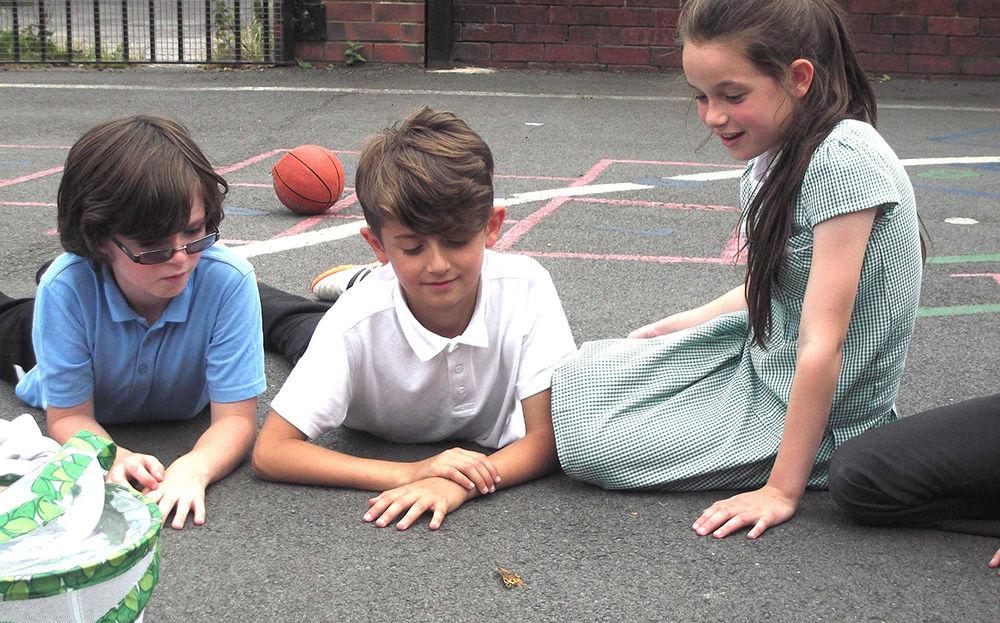 St Patrick's School Kids Playground